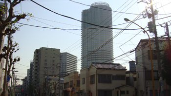 20121106-2.jpg